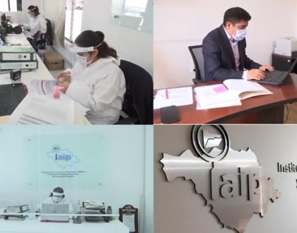 IAIP recibió 177 solicitudes de  información de enero a julio de 2020